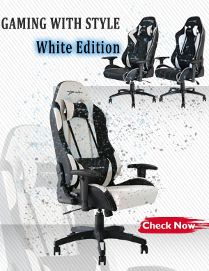 EwinRacing Champion Series Gaming Chair