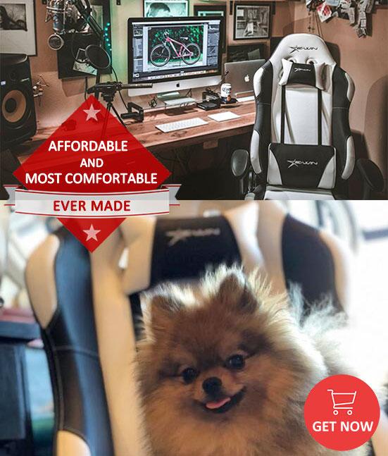 EwinRacing Flash Series Gaming Chair